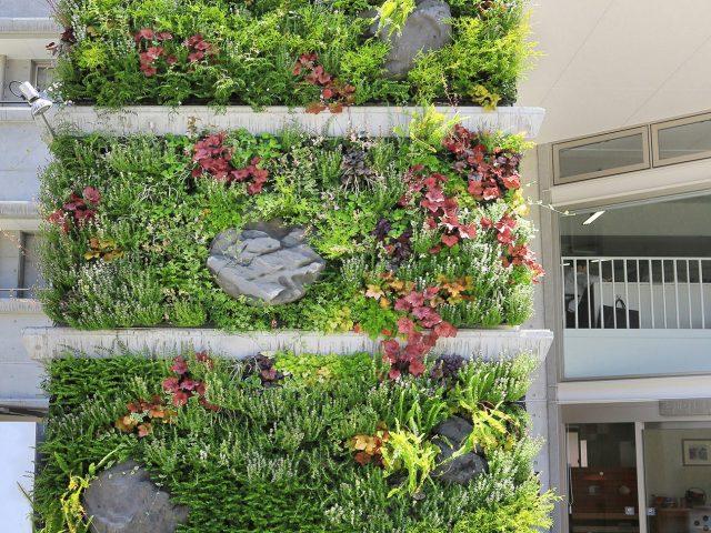 建物の外壁を壁面緑化。脱着可能な専用鉢なので季節に合わせて楽しめます
